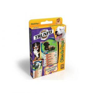 Super Trunfo Cães de Raça - Grow - Sapeca Brinquedos